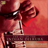 The Art of the Indian Dilruba